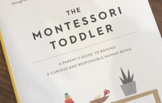 Montessori Book Recommendations: Learn More About a Montessori Education and the Benefits to Your Child